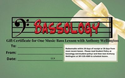 Bassology Holiday GC 1084x683 for website